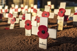 Remembrance Day Crosses